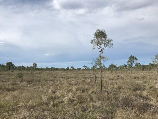 152/null McKenzie Road, Alton Downs QLD 4702