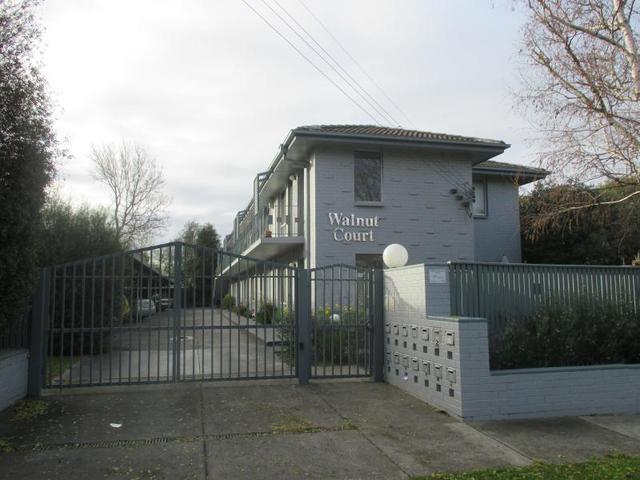 13/6 Walnut Street, Carnegie VIC 3163