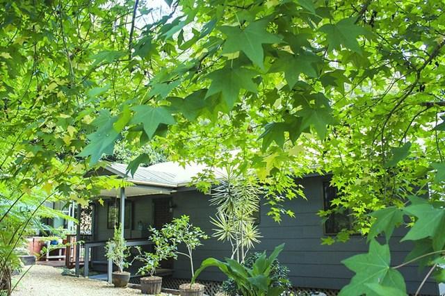 16 Lucania Court, Tamborine Mountain QLD 4272