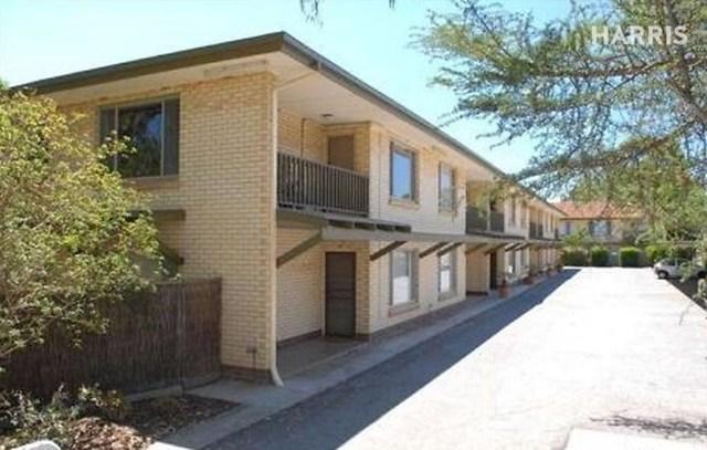 16/3 Rosella Street, SA 5070
