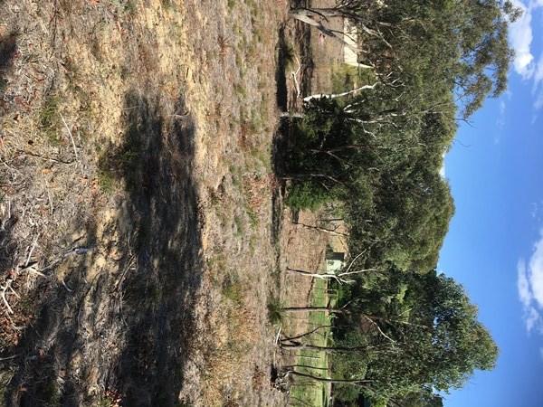 9 Sandbox Road, Wentworth Falls NSW 2782