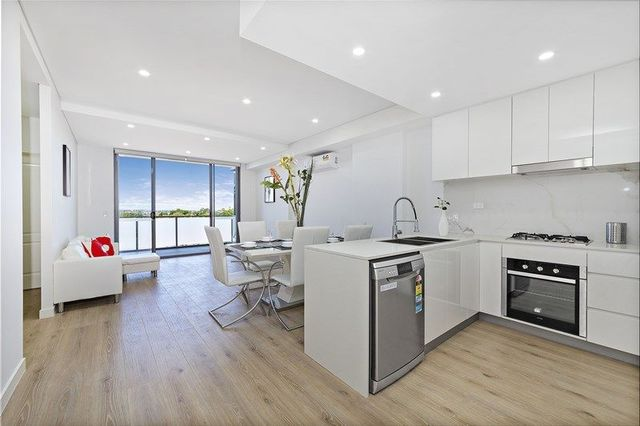 248-252 Liverpool Road, NSW 2136