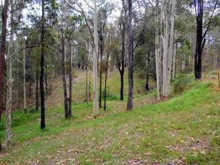 436 Sandy Creek Road