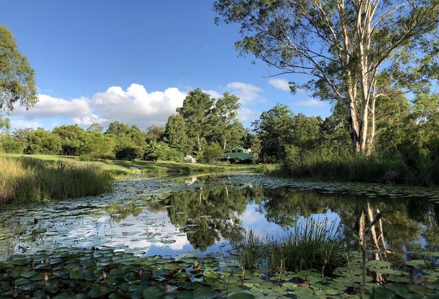 144 Stringybark Lane, Toonumbar NSW 2474