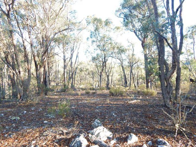 Good Good Fire Trail, Jerangle NSW 2630