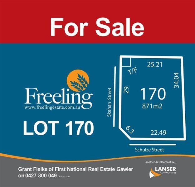 Lot 170 Schulze Street, Freeling SA 5372