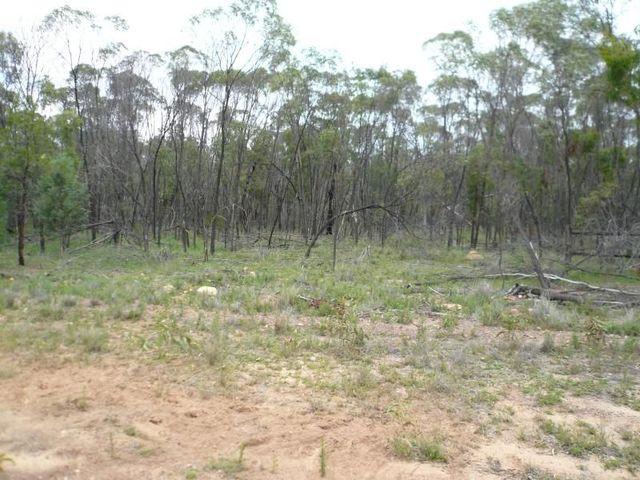 LOT 22 Cypress Road, Daandine QLD 4405