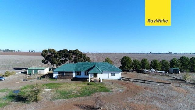 331 Calarie Road, Forbes NSW 2871
