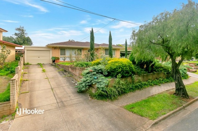 41 Brookvale Road, Windsor Gardens SA 5087