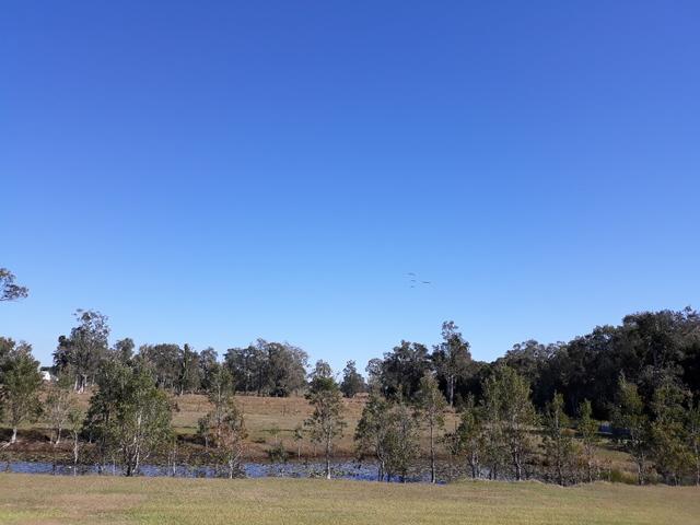88 Broadwater Road, Dungarubba NSW 2480