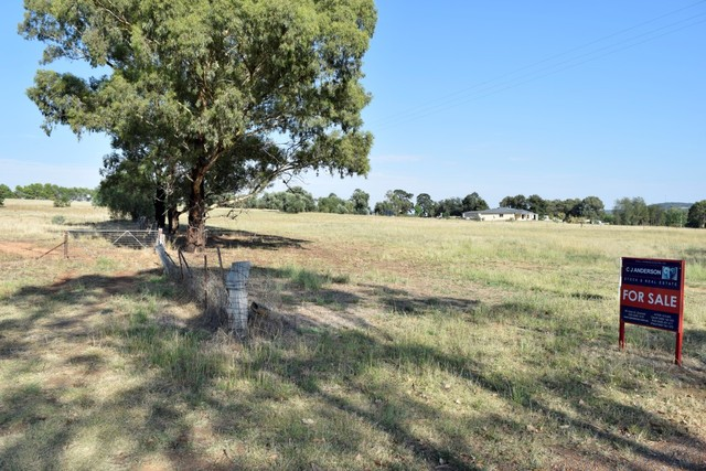 Lot 2 Young Road, Grenfell NSW 2810