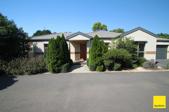 8/100 Molonglo Street, NSW 2621