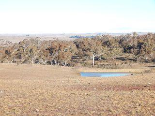 720 Dry Plains Road