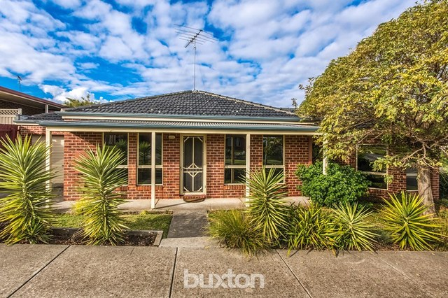 24 Molesworth Drive, Highton VIC 3216