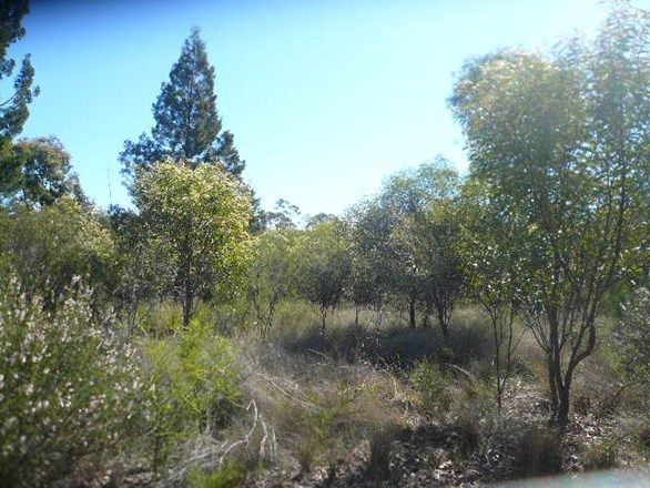 LOT 99 Machaness Road, Tara QLD 4421