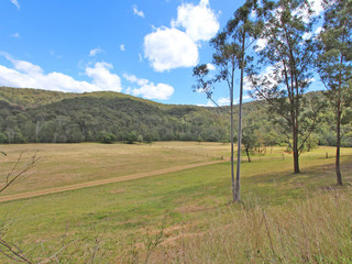 2410 Wollombi Road