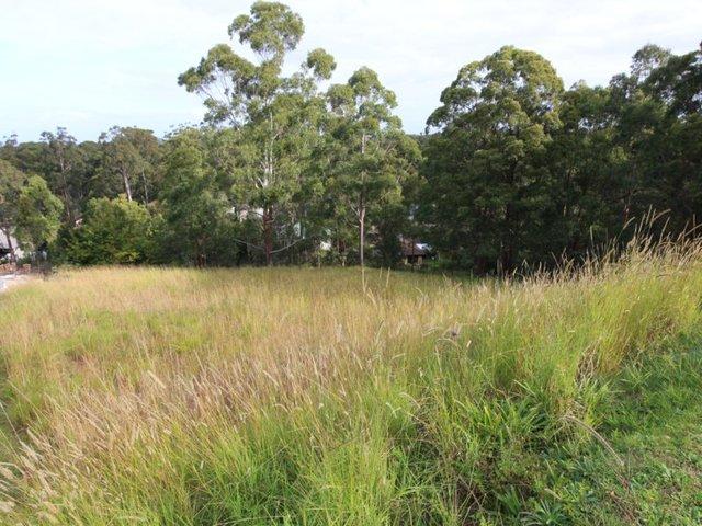 3 The Knoll, Tallwoods Village NSW 2430