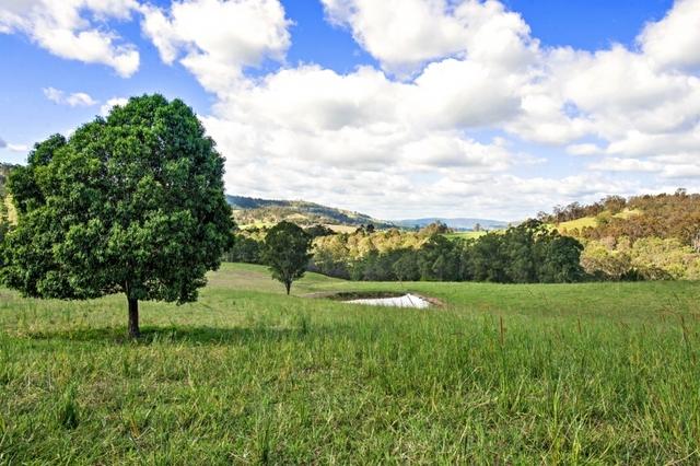 426 Cawarra Road, Gresford NSW 2311