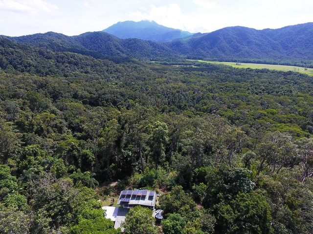 63 Old Forest Creek Road, Daintree QLD 4873