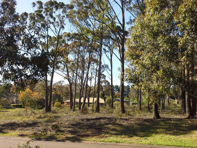 15 Seiberi Close, NSW 2785