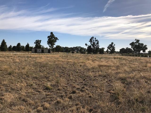 19 Kingfisher Drive, Mulwala NSW 2647