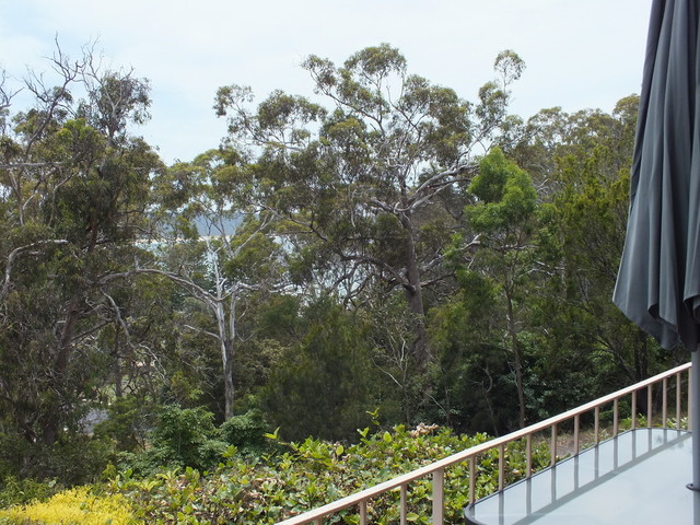 (no street name provided), NSW 2550