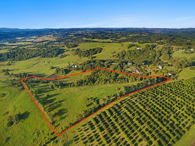 54 Satinwood Drive, Mcleans Ridges NSW 2480