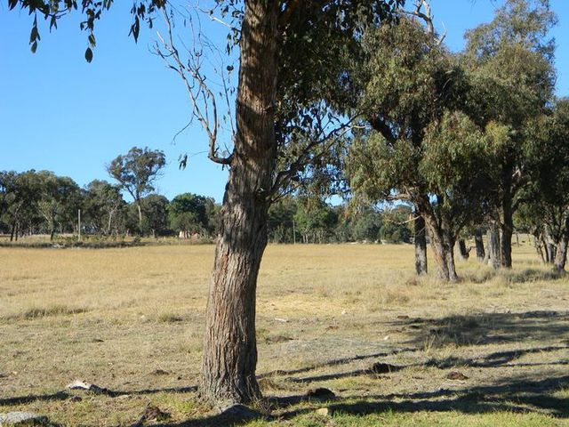 Lot 620 Eukey Road, Stanthorpe QLD 4380
