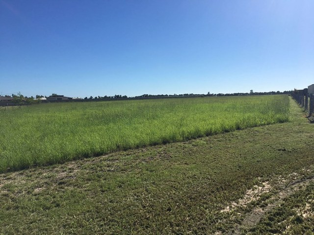 Lot 37 Fischer Court, Chinchilla QLD 4413