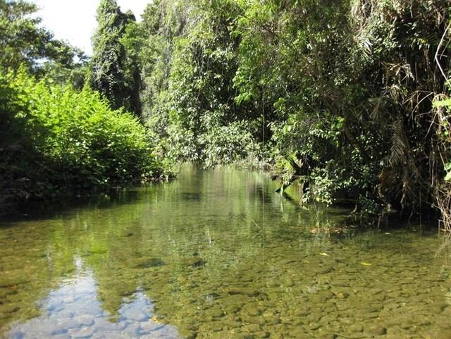 629 Tully Gorge Road, Jarra Creek QLD 4854