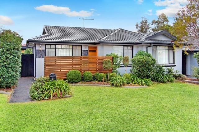 16 Walter Street, Kingswood NSW 2747