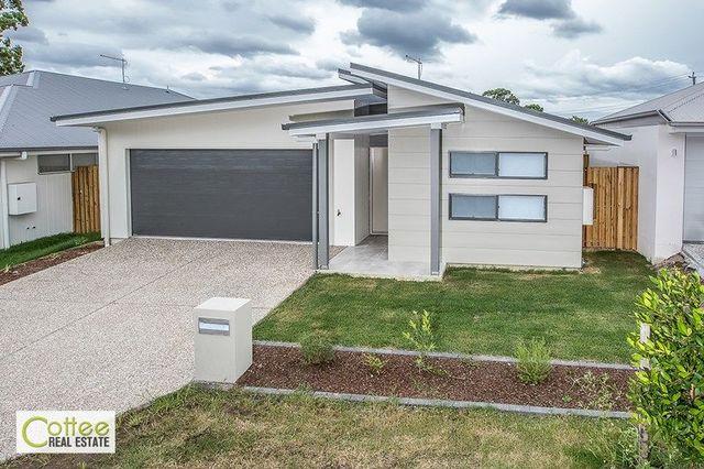 42-31 Matthew Street, Carseldine QLD 4034