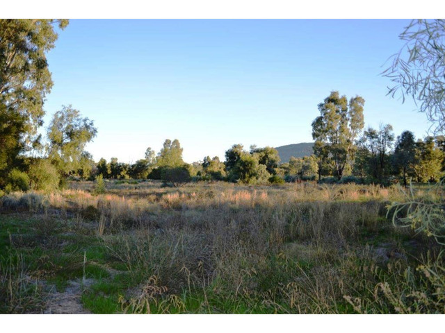 53 Reading Road, Gunnedah NSW 2380