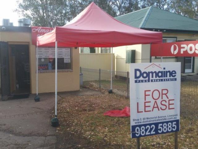 248 Edmondson Ave, Austral NSW 2179
