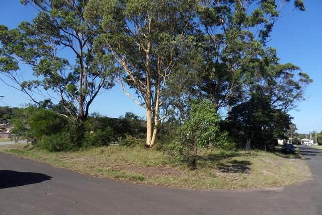 16 Wildwood Avenue, NSW 2540