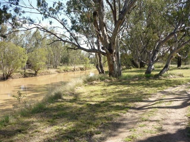 Villacoola L1 Carnarvon Highway, Surat QLD 4417
