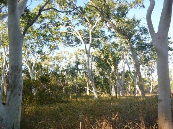 9 Idress Drive, Cooktown QLD 4895