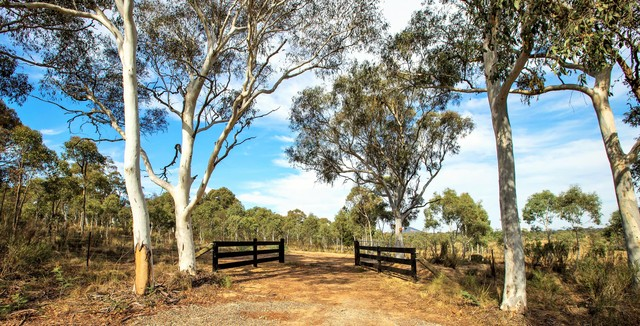 90 Allen Road, NSW 2618