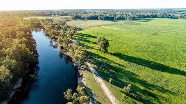Avalon Old Narrandera Rd, Currawarna Via, Wagga Wagga NSW 2650
