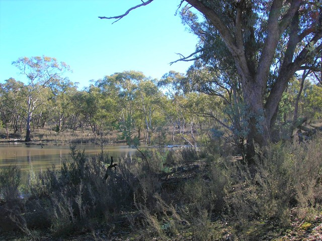 Lot 34 Palarang Road, NSW 2632