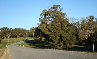 Lot 250 Nabaroo Road