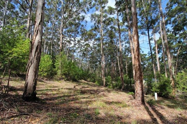 Lot 209 Adams Road, Denmark WA 6333