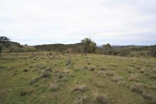 . Dry Plains Road
