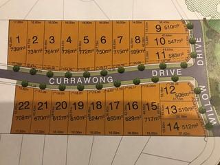 Currawong Drive