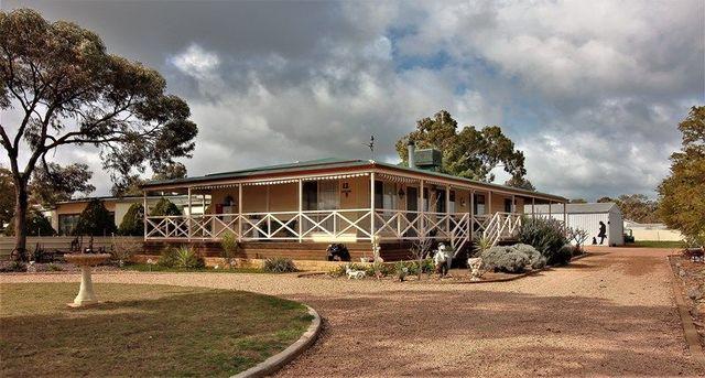 12 Younghusband Terrace Ext., SA 5523