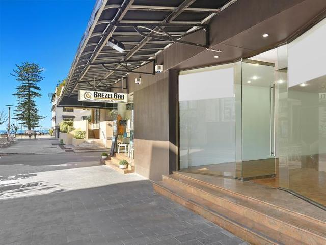 5a Raglan Street, Manly NSW 2095