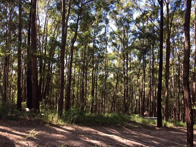 701 Coomba Road, Whoota NSW 2428