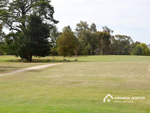 Lot 1011 Putters Court, NSW 3644