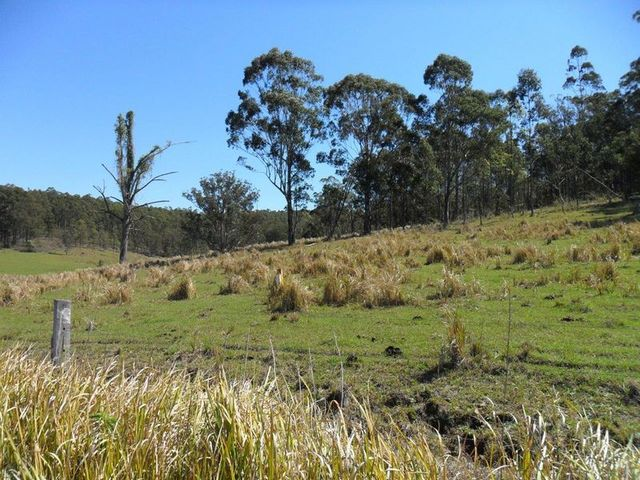 Lots 195 & 178 Smiths Creek Road, Smiths Creek NSW 2460