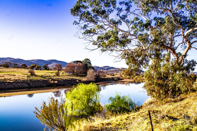 1449 Tidbinbilla Road, Tharwa ACT 2620